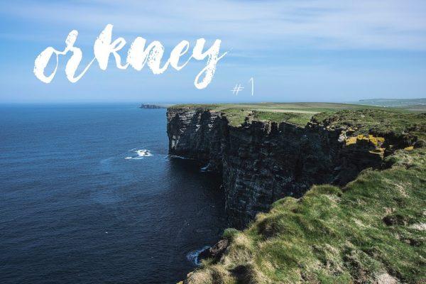 Orkney Islands #1 – faune & flore